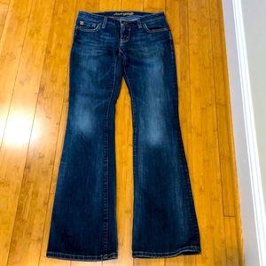 AMERICAN EAGLE sz 2 regular jeans